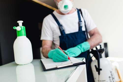 رش مبيدات حشرية بضمان 3 شهور